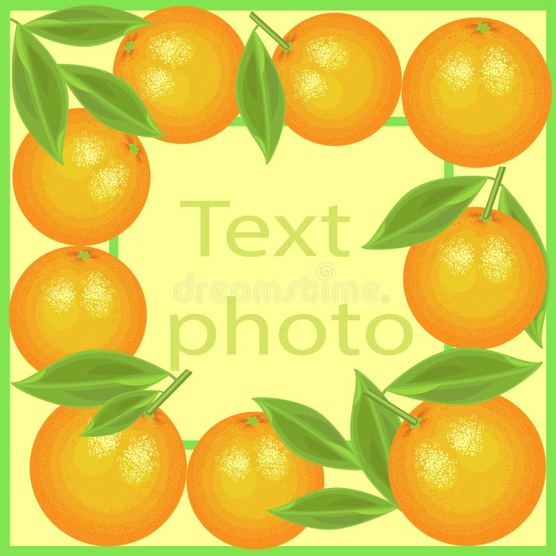 Original frame for photos and text. Juicy oranges create a festive mood. A perfect gift for children and adults. Vector royalty free illustration