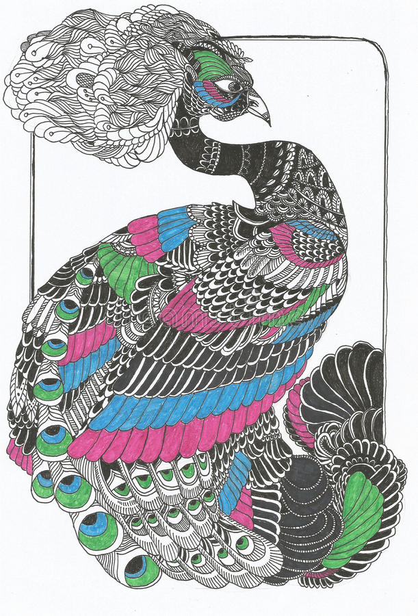 Original- påfågellinje konstteckning arkivbild