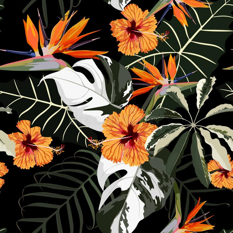 Free Original Seamless Tropical Pattern With Bright Leaves And Orange Hibiscus Strelitzia Flowers Background. Stock Photos - 183619443