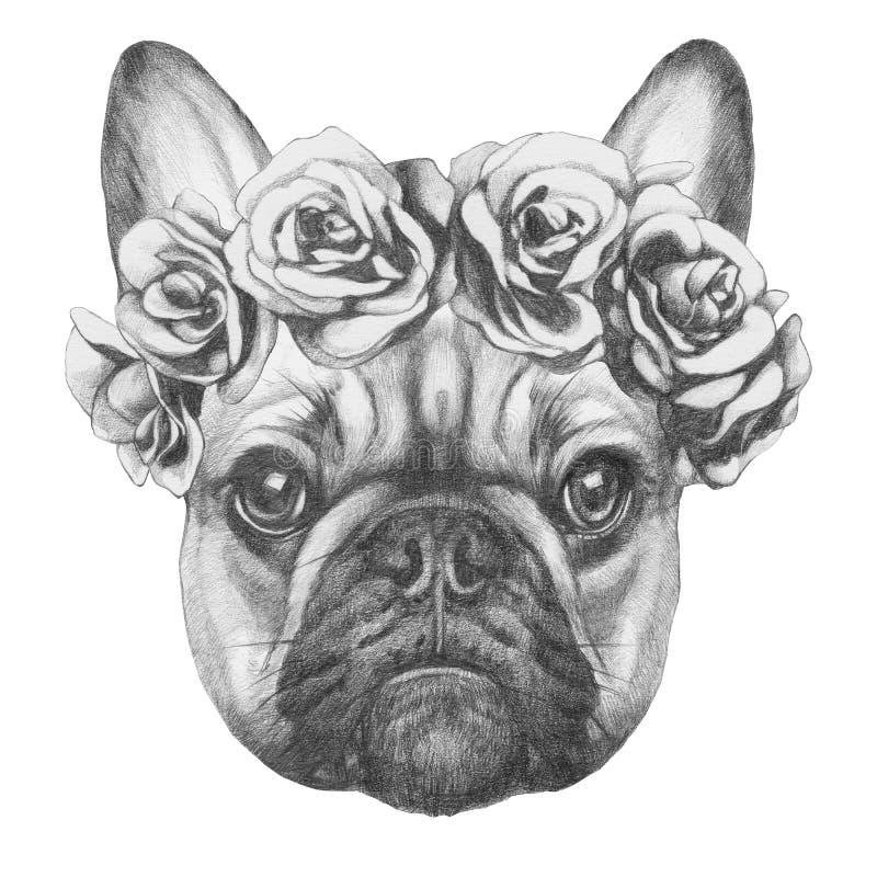 Original- teckning av den franska bulldoggen med rosor vektor illustrationer