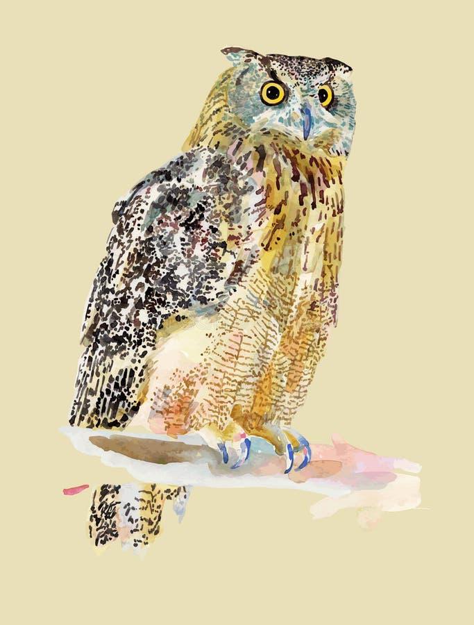 Original- vattenfärgmålning av fågeln, uggla på a royaltyfri illustrationer
