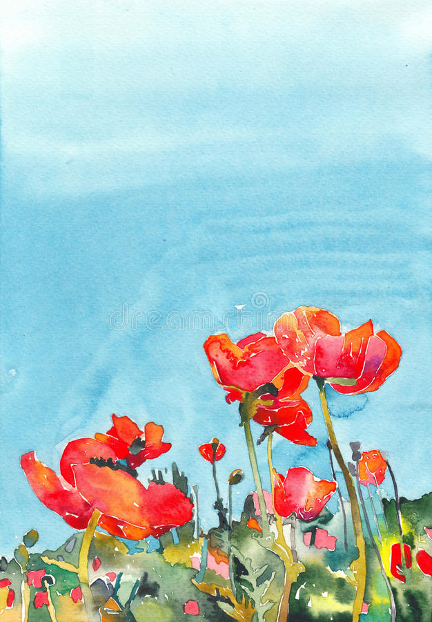 Original watercolor poppy flower background stock photos