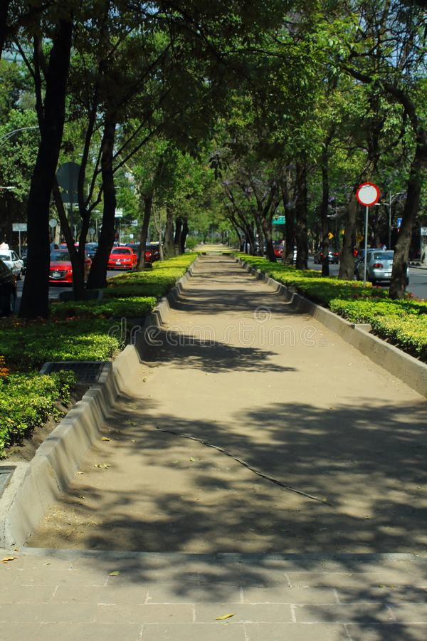 Paseo de la Reforma is the most important and emblematic avenue in Mexico City. royalty free stock images