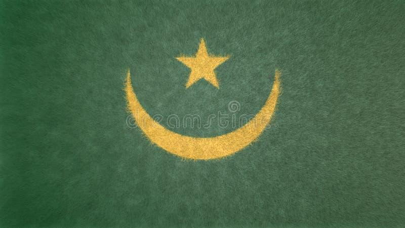 Origineel 3D beeld van de vlag van Mauretanië stock illustratie