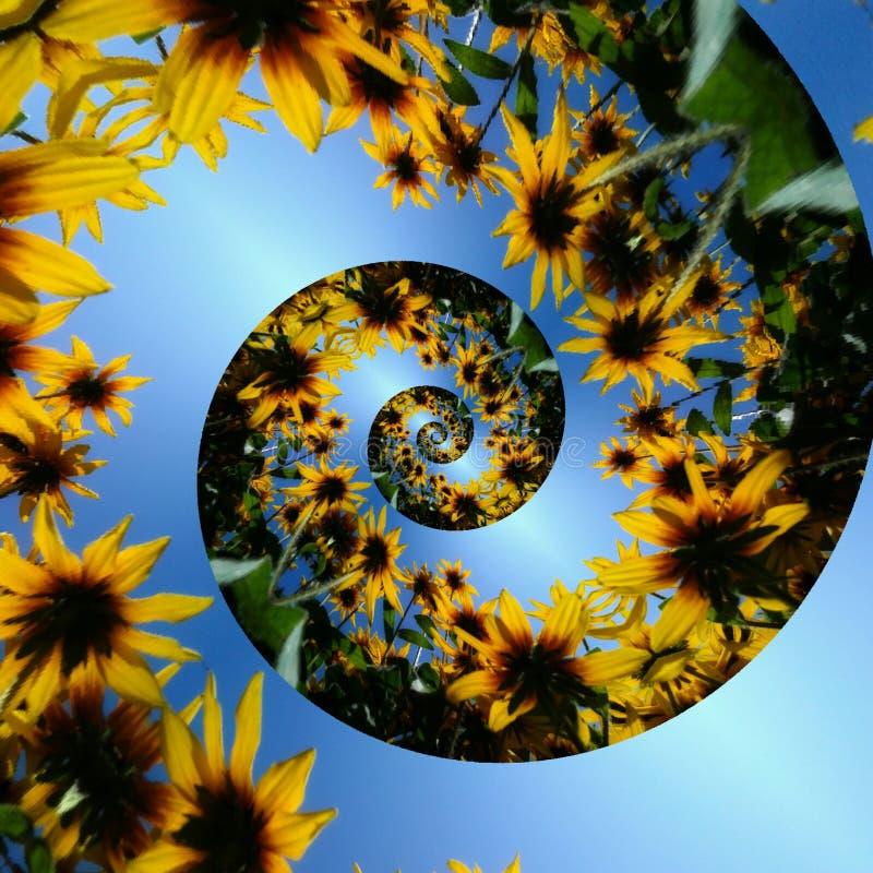 Originele bloemen spiraalvormige foto stock afbeelding