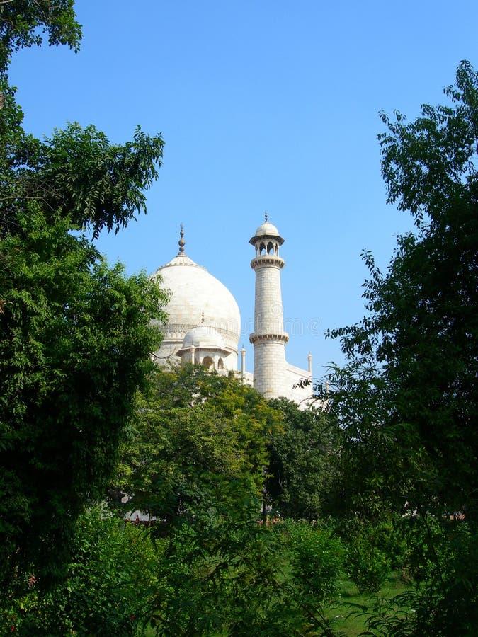 Originele mening van Taj Mahal royalty-vrije stock fotografie