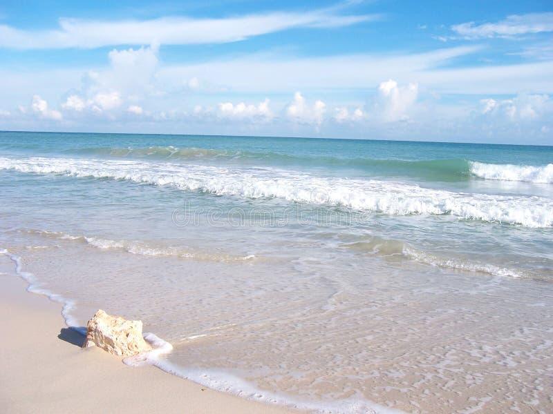Orilla de la playa con la roca fotografía de archivo