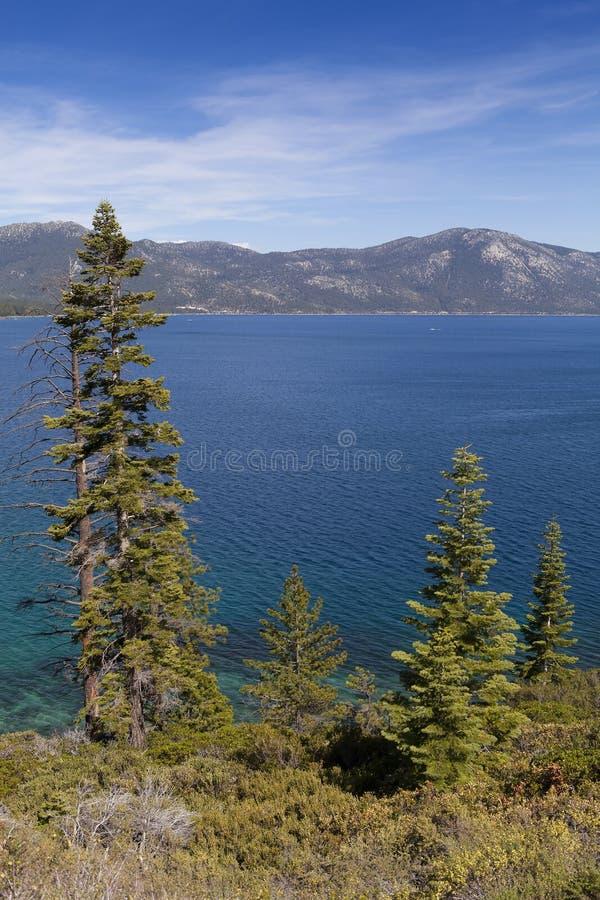 Orilla de Lake Tahoe imagenes de archivo