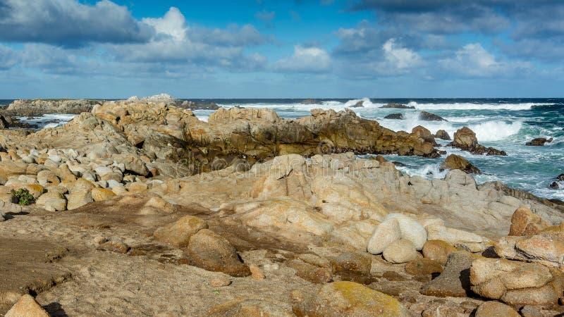 Orilla de mar rocosa en la arboleda pacífica, península de Monterey, California imagenes de archivo