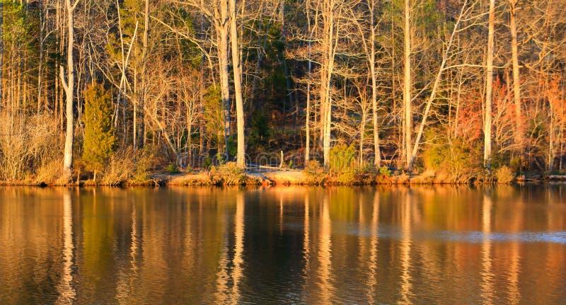 Orilla del lago en el parque de Beatty en Charlotte No imagen de archivo libre de regalías