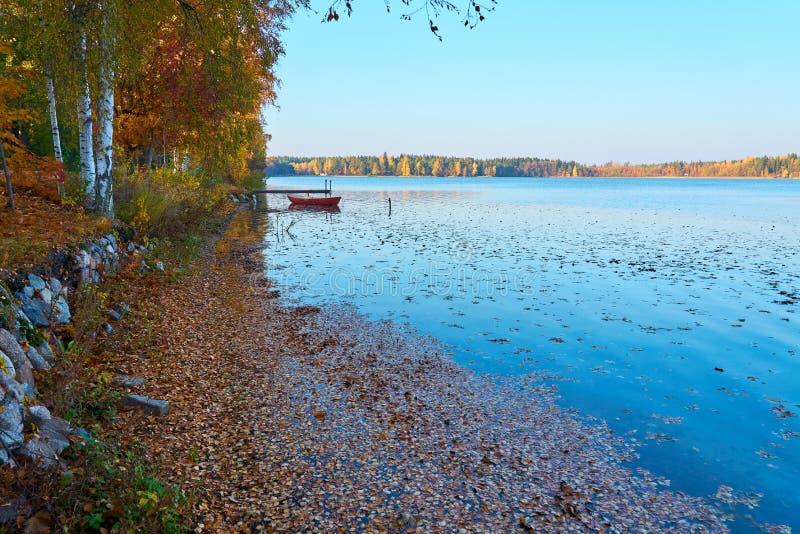 Orilla del lago en el tiempo del otoño en una puesta del sol Hojas de otoño en agua foto de archivo