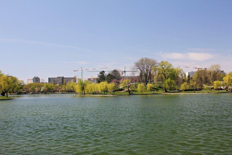 Orilla del lago en primavera imagen de archivo