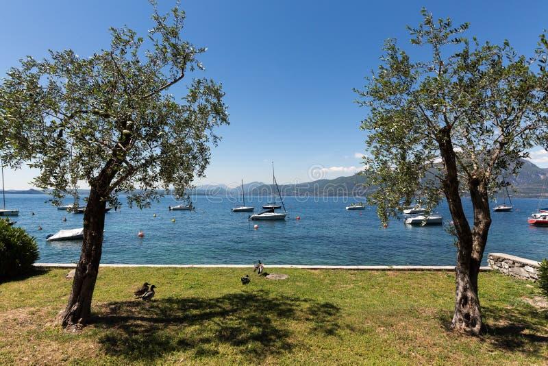 Orilla del lago Garda fotografía de archivo