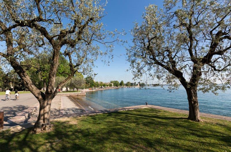 Orilla del lago Garda en Bardolino fotografía de archivo libre de regalías