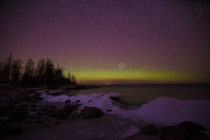 Orilla del lago y del aurora borealis ladoga Pyatirechye, región de Leningrad Rusia fotografía de archivo