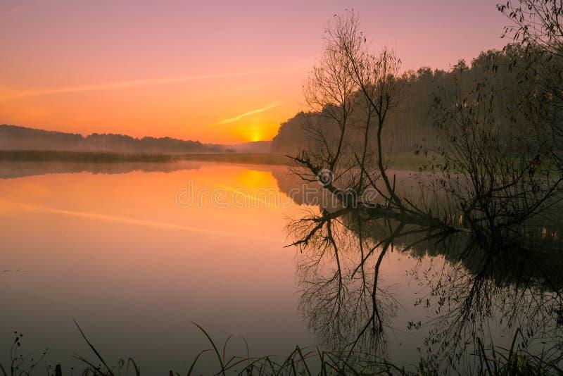 Orilla del río en la salida del sol imagen de archivo libre de regalías