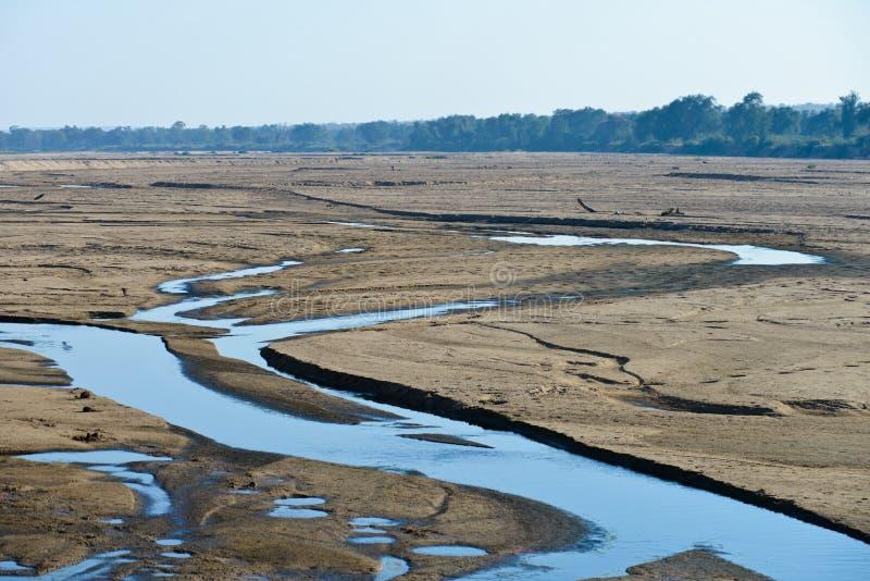 Orilla del río del Limpopo fotos de archivo libres de regalías