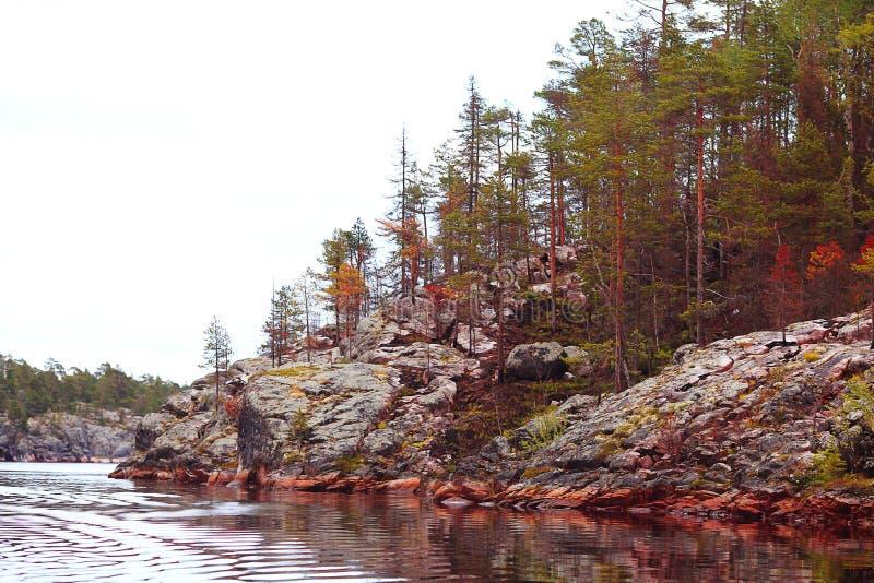Orilla fría del lago fotografía de archivo