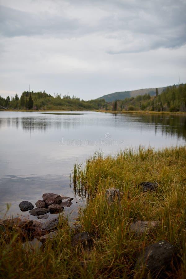 Orilla pacífica del lago en un día cubierto melancólico fotografía de archivo libre de regalías