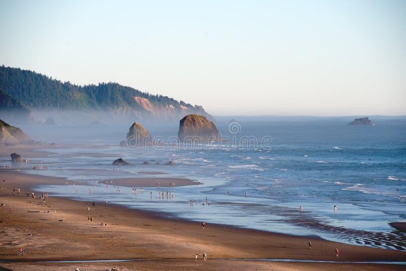Orilla pintoresca del Océano Pacífico con la onda costera del ligh fotografía de archivo libre de regalías
