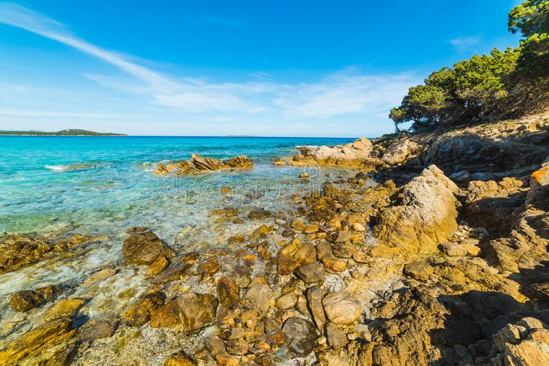 Orilla rocosa de Rena Bianca en Costa Smeralda fotos de archivo libres de regalías