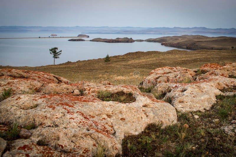 Orilla rocosa Piedras enormes en el árbol Tarde del verano, islas imagen de archivo libre de regalías