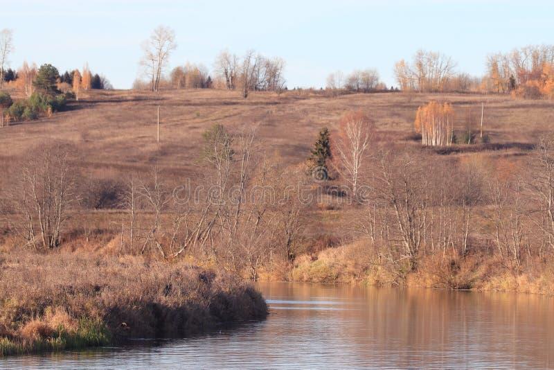 Orilla salvaje del lago landscape imagenes de archivo