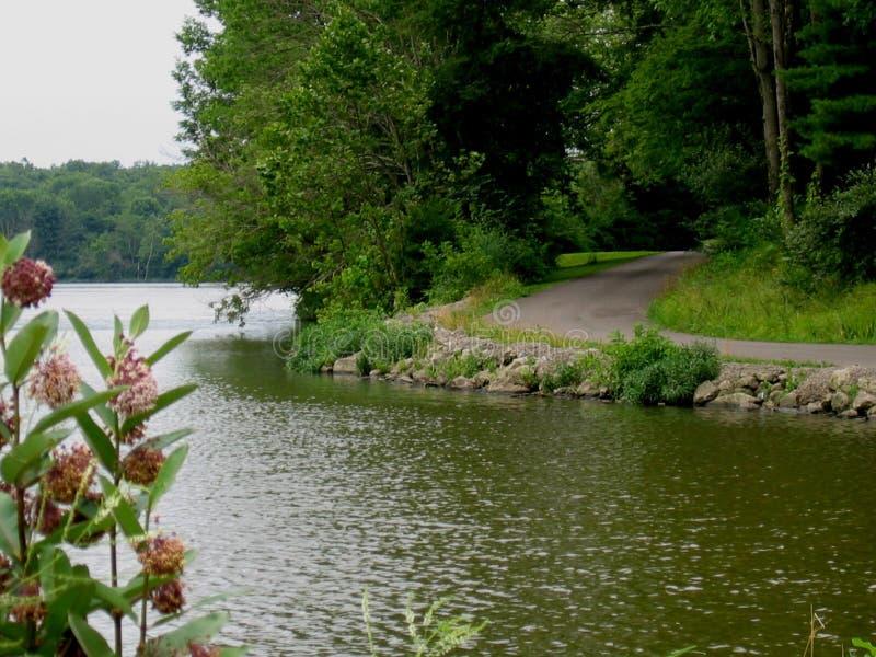 A orillas del lago camino imágenes de archivo libres de regalías
