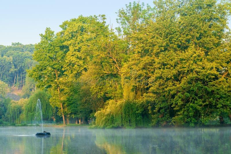 A orillas del lago la madrugada imagen de archivo libre de regalías