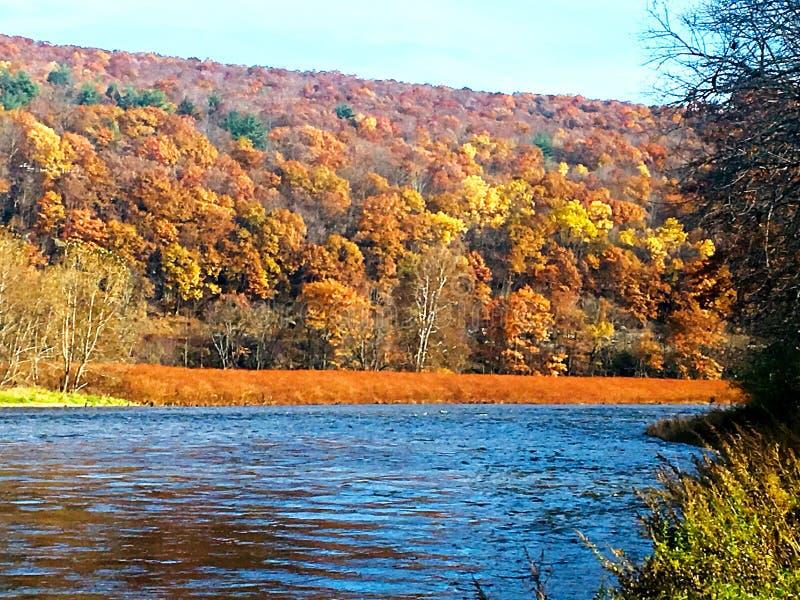 A orillas del río Delaware foto de archivo