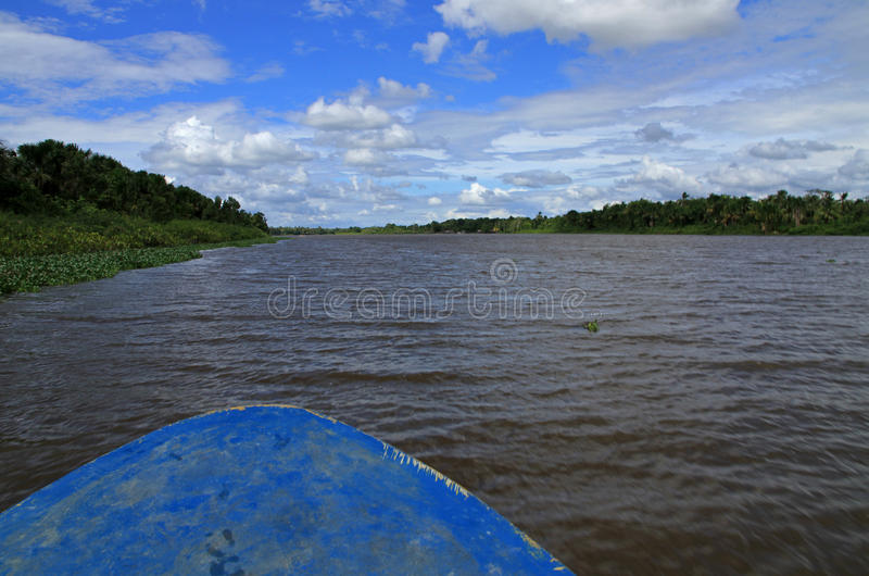 Orinoco River. Delta in Venezuela stock photos