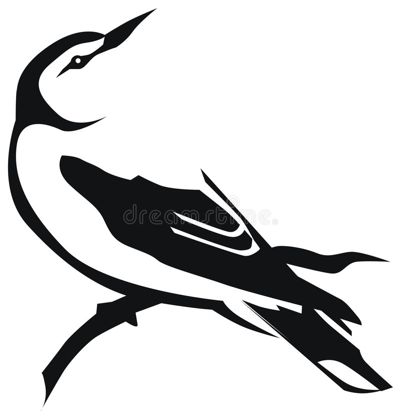 Oriole illustration stock