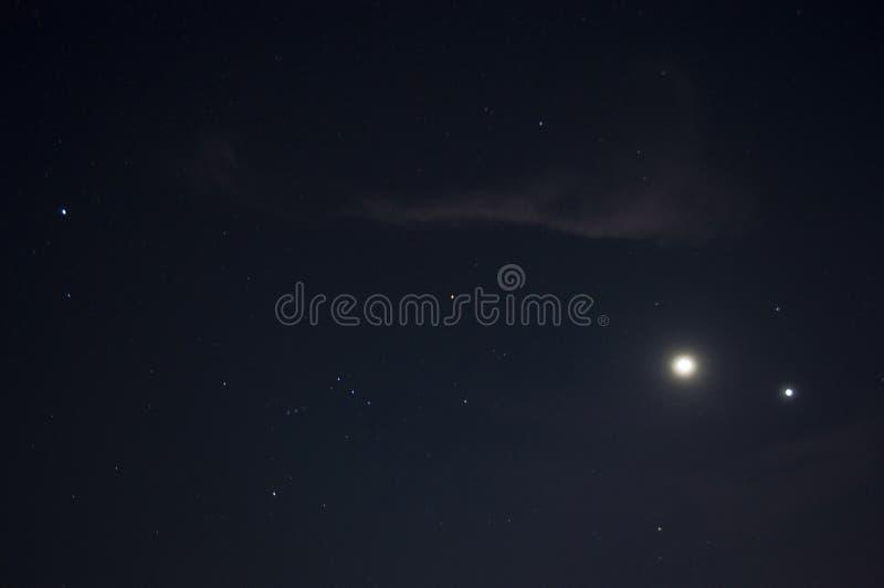 Orion Constellation royaltyfri bild