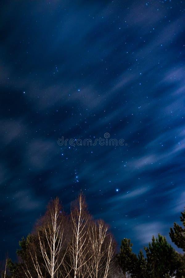 Orion Constellation no céu escuro acima da exposição longa da floresta com nuvens moventes fotos de stock royalty free