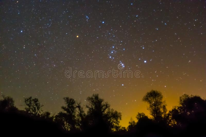 Orion constellation rising over a night forest silhouette. Night scene, orion constellation rising over a night forest silhouette royalty free stock image