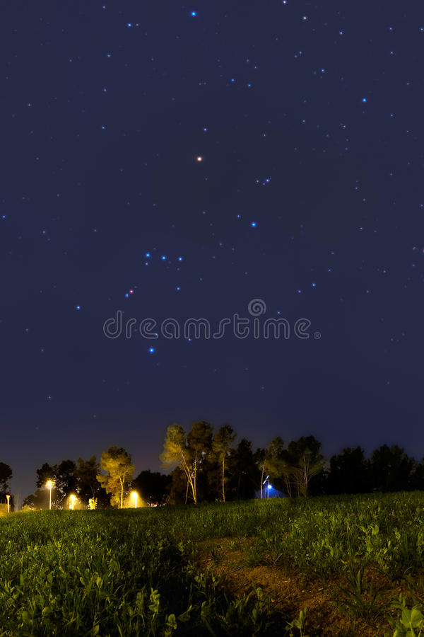 Orion Constellation setting at dusk. In Spring royalty free stock images