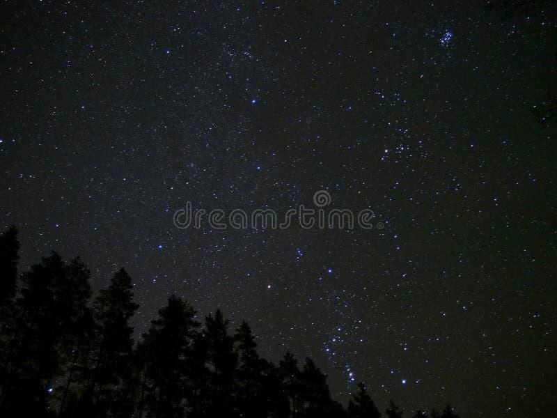 Orion e Pleiades protagonizam no céu noturno imagem de stock royalty free
