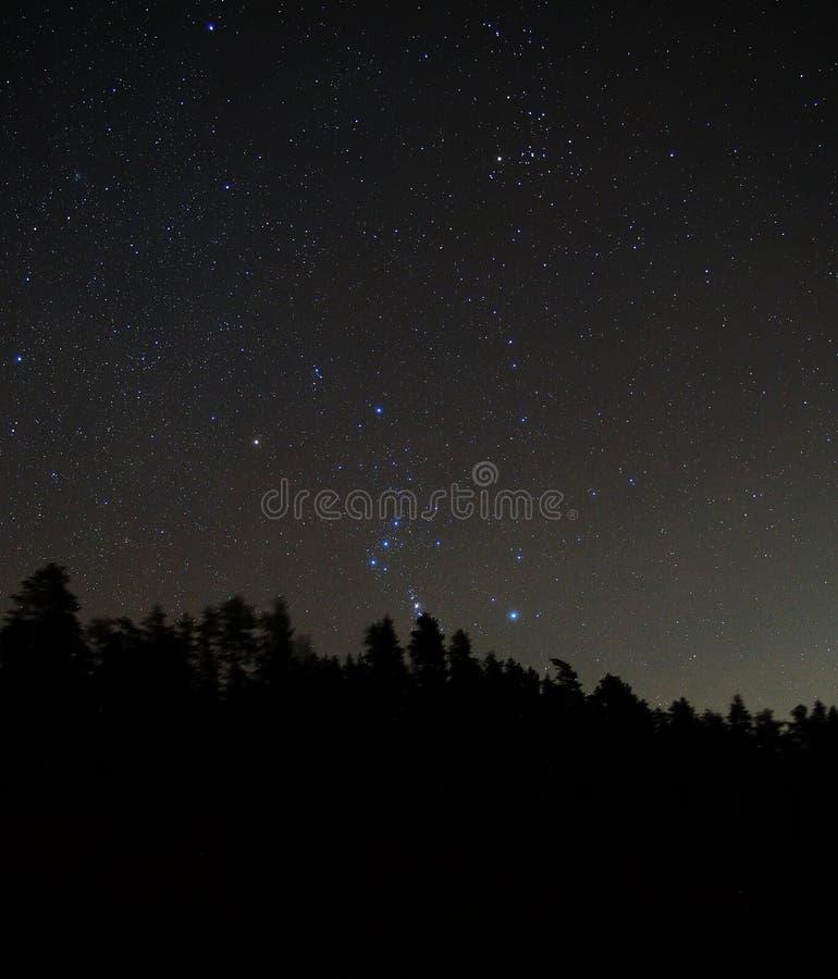 Orion konstellationstjärna i natthimmel royaltyfria bilder