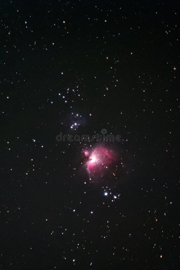 Orion Nebula stockbild