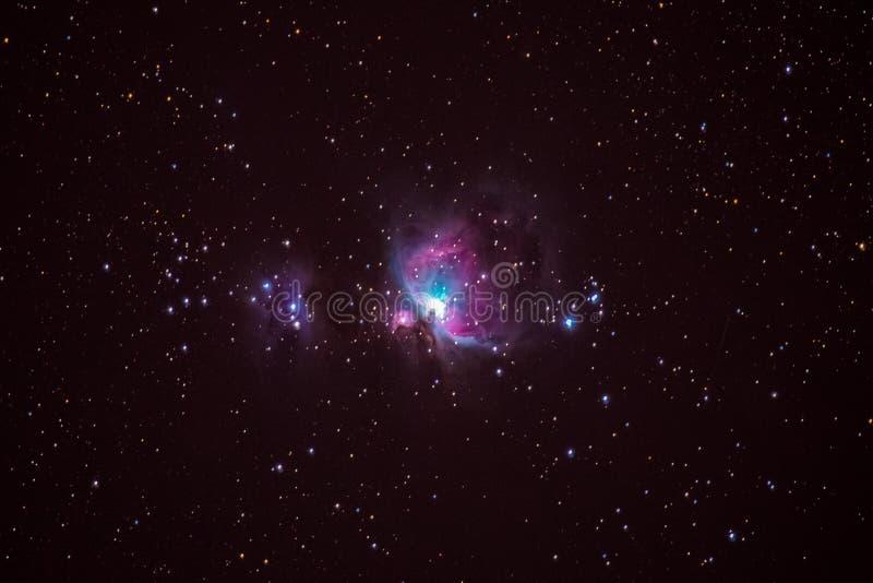 Orion Nebula stock foto's