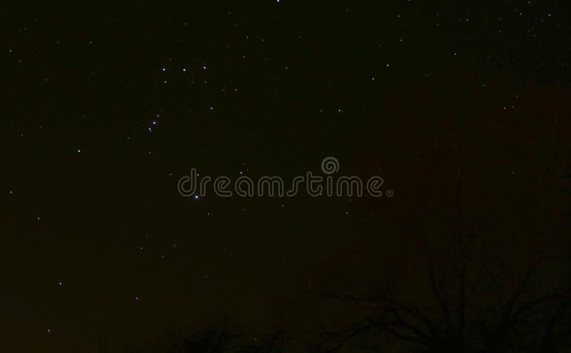Night sky Orion Belt royalty free stock photos