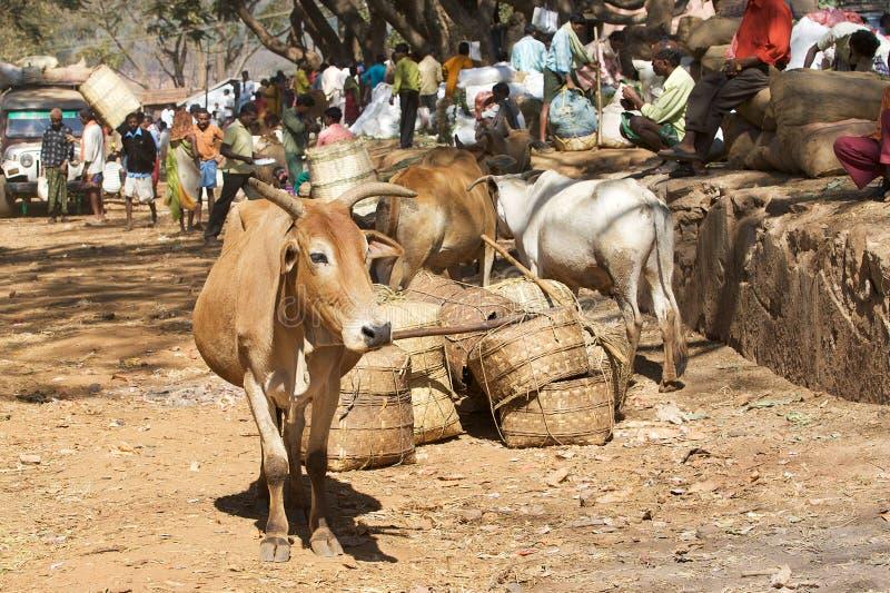 Download Orissa Tribal Rural Weekly Market Editorial Image - Image: 20275250