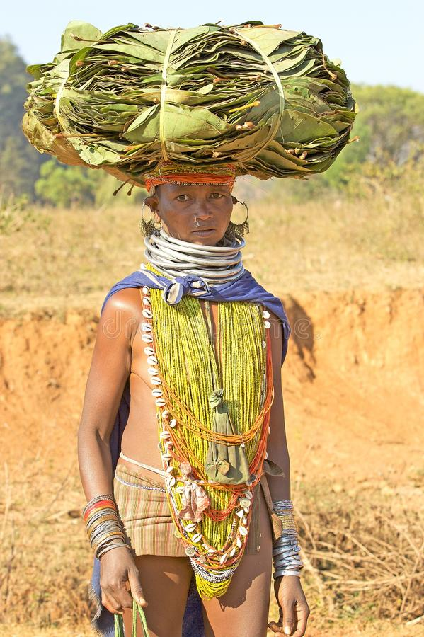 Download Orissan Tribal Woman Carrying Leafs Editorial Photography - Image: 18962642
