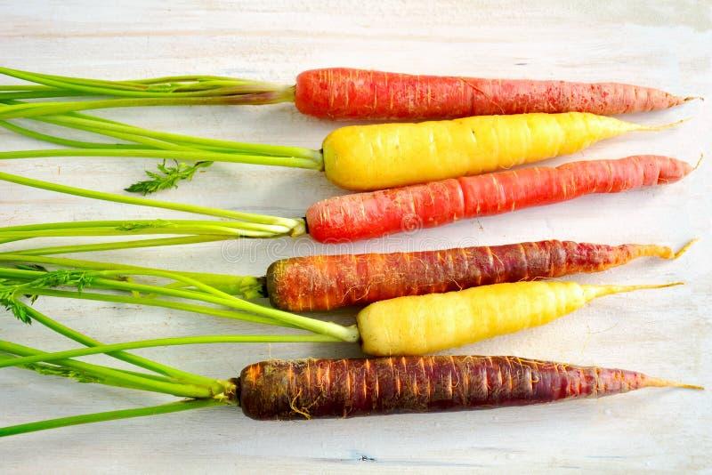Orizzontale delle carote dell'arcobaleno immagini stock libere da diritti