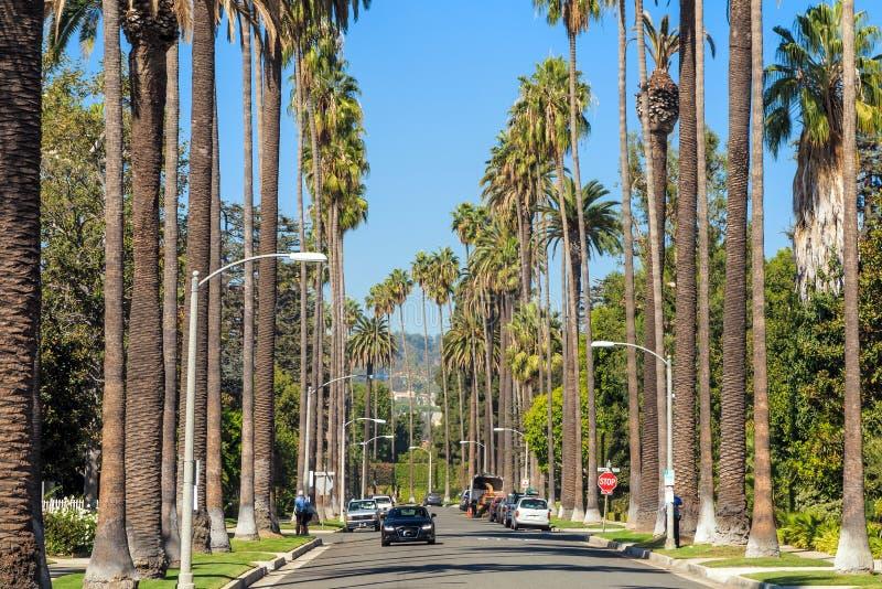 Orizzonte del centro di Los Angeles immagini stock libere da diritti
