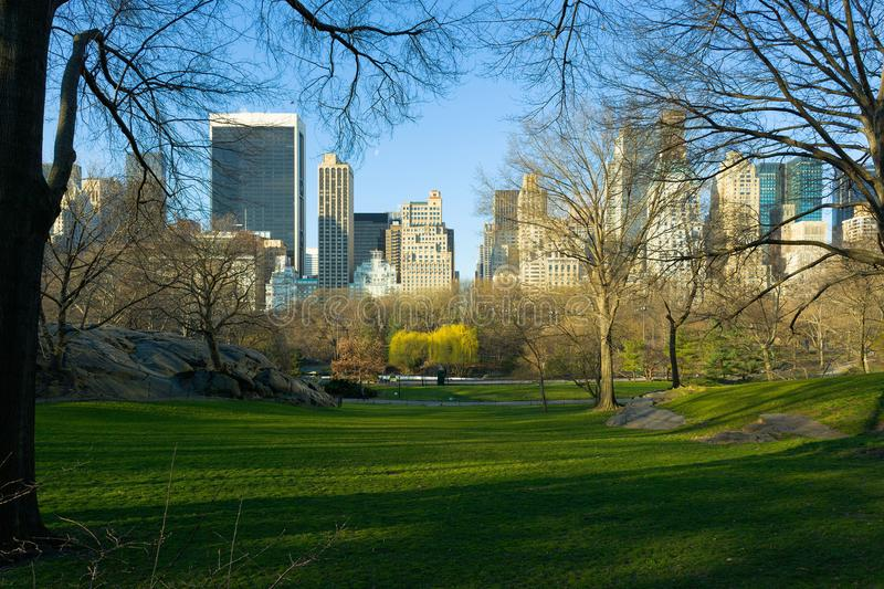 Orizzonte del Midtown Manhattan dal Central Park in New York fotografie stock