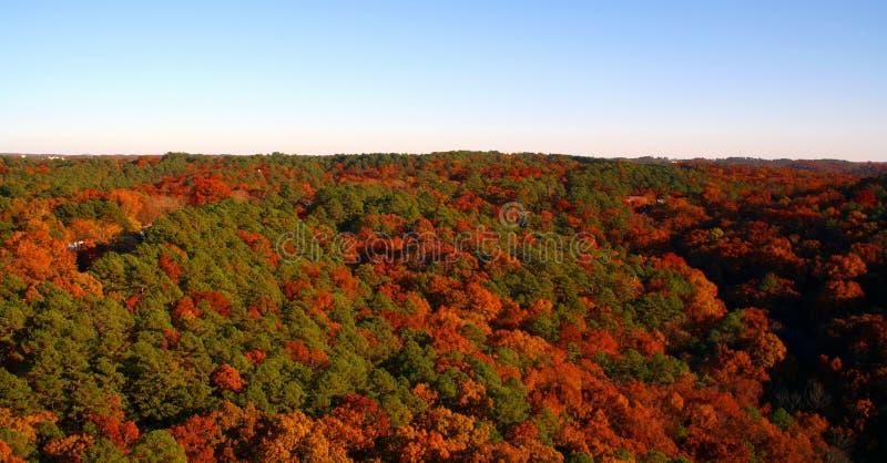 Orizzonte di autunno fotografia stock