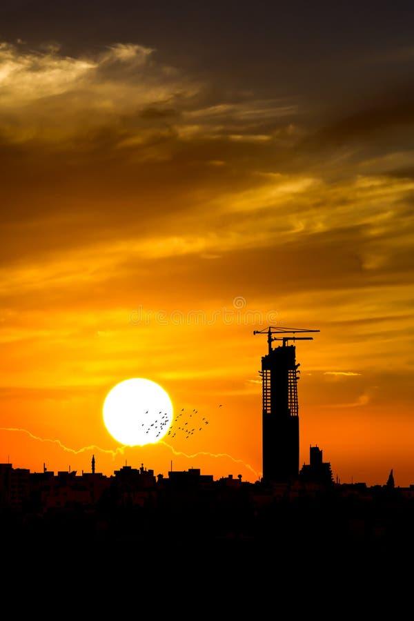 Orizzonte di fotografia della siluetta di tramonto immagine stock libera da diritti