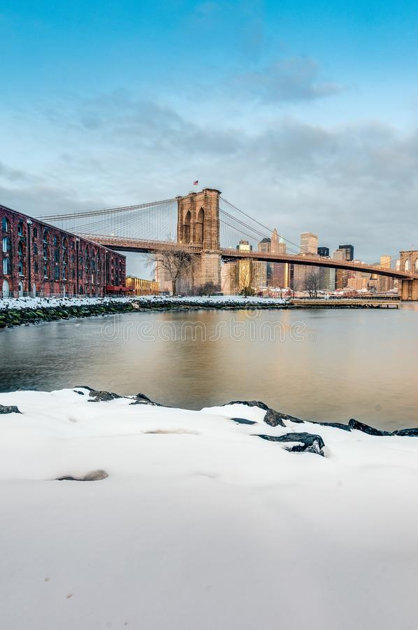 Orizzonte di Manhattan da Pebble Beach a Brooklyn, Stati Uniti fotografia stock