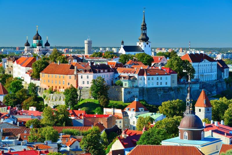 Orizzonte di Tallinn Estonia immagine stock libera da diritti